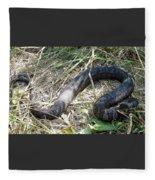 Snake So Pretty Fleece Blanket