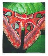 Snakehead Moth Fleece Blanket