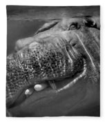 Sneaky Underwater Hippo Grin Fleece Blanket