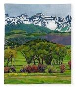 Sneffels Range Spring Acrylic Fleece Blanket