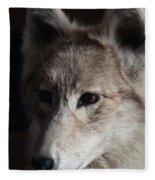 Snow Coyote Fleece Blanket