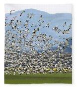 Snow Geese Exodus Fleece Blanket