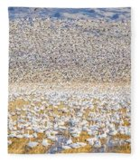 Snow Geese Take Off 1 Fleece Blanket