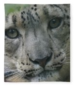 Snow Leopard 10 Fleece Blanket