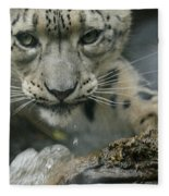 Snow Leopard 11 Fleece Blanket