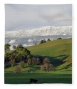 Snow On The Great Western Tiers, Tasmania Fleece Blanket