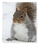 Snow Squirrel Fleece Blanket