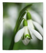Snowdrops  Fleece Blanket