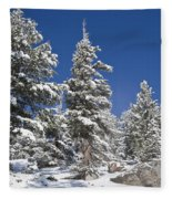 Snowscape 2 Fleece Blanket