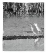 Snowy Egret - 1 Fleece Blanket