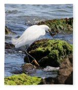 Snowy Egret  Series 2  2 Of 3  Preparing Fleece Blanket