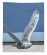 Snowy Owl 4 Fleece Blanket