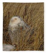 Snowy Owl In Grass Fleece Blanket