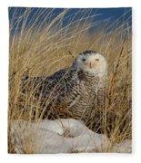 Snowy Owls On The Beach Fleece Blanket