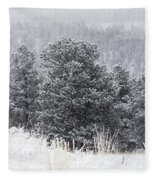 Snowy Pines In The Pike National Forest Fleece Blanket