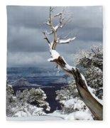 Snowy View Fleece Blanket