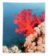 Soft Coral  Fleece Blanket