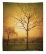Soft Light In Summerland Fleece Blanket