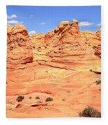Soft Light On Vermilion Cliffs Fleece Blanket
