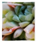 Soft Natural Succulents Fleece Blanket
