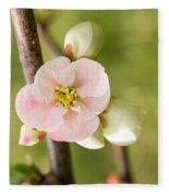 Pink Quince Blossom Fleece Blanket