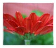 Soft Red Fleece Blanket