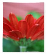 Soft Red Fleece Blanket
