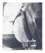 Softly Detailed Fleece Blanket