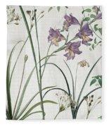 Softly Purple Crocus Fleece Blanket