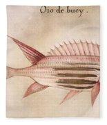 Soldier-fish, 1585 Fleece Blanket