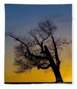 Solitary Tree At Sunset Fleece Blanket