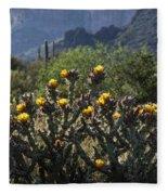 Sonoran Desert Cholla  Fleece Blanket