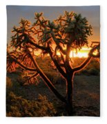 Sonoran Desert Sunrise 2 Fleece Blanket