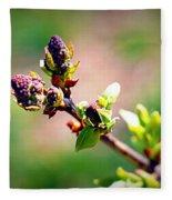 Soon To Be Lilacs Fleece Blanket