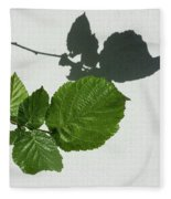 Sophisticated Shadows - Glossy Hazelnut Leaves On White Stucco - Horizontal View Left Down Fleece Blanket