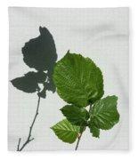 Sophisticated Shadows - Glossy Hazelnut Leaves On White Stucco - Vertical View Upwards Left Fleece Blanket