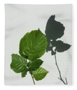 Sophisticated Shadows - Glossy Hazelnut Leaves On White Stucco - Vertical View Upwards Right Fleece Blanket