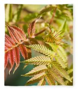 Sorbaria Sorbifolia Spring Foliage Fleece Blanket