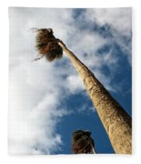 Sorrento Date Palms Fleece Blanket