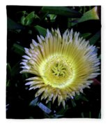 South African Flower 1 Fleece Blanket