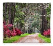 South Carolina Lowcountry Spring Flowers Dirt Road Edisto Island Sc Fleece Blanket