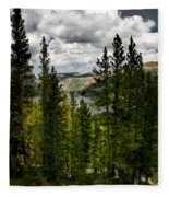 South Lake Through The Pines Fleece Blanket