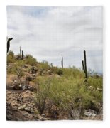 South Mountain2 Fleece Blanket