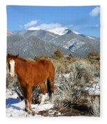 South West Ginger Fleece Blanket