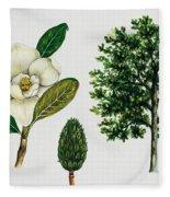 Southern Magnolia Or Bull Bay  Fleece Blanket