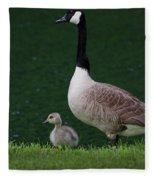Southern Pond View Fleece Blanket