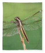 Spangled Skimmer Dragonfly Female Fleece Blanket