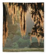 Spanish Moss In The Morning Fleece Blanket