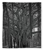 Spanish Moss Of The Tree Fleece Blanket