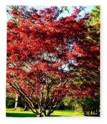 Sparkling Japaneese Maple Tree Fleece Blanket